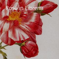 Rose in Libreria