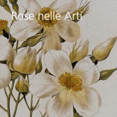 Rose nelle Arti